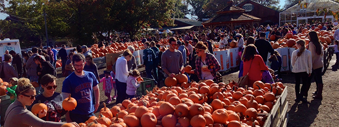 Family Trip to Linvilla Orchards on Katie Crafts; http://katiecrafts.com